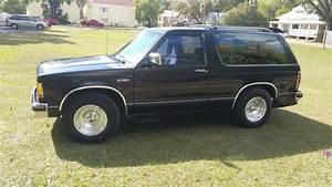 1989 Chevy Blazer S10 For Sale In Plant City  Fl