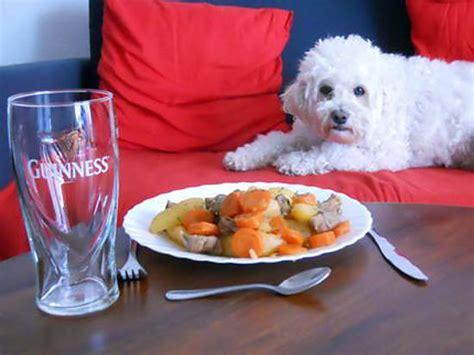 cuisine irlandaise typique recette d 39 stew typique ragoût irlandais