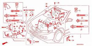 Engine Wire Harness  Rh   Diesel  For Honda Cars Accord