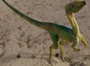 Tops: 10 Greatest Dinosaurs from Jurassic Park (franchise ...