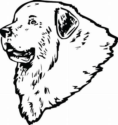 Pyrenees Clipart Drawings 600px 93kb