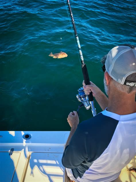 grouper fishing angler bait nearshore rods sewell rod offshore keeper landing caught techniques fall power