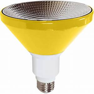 Best flood light bulbs bocawebcam
