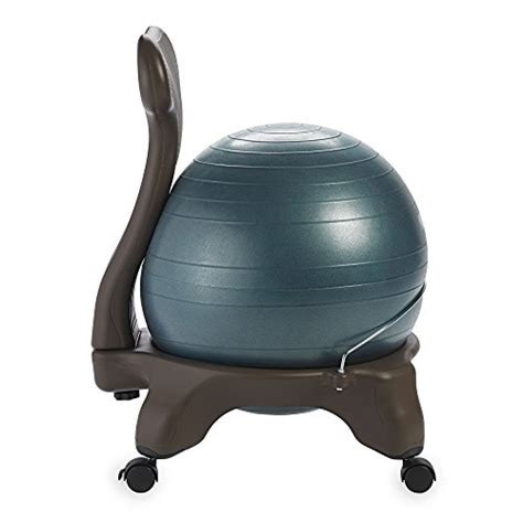 gaiam balance ball kamisco