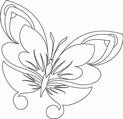 Butterfly Vorlagen Schmetterling Zum Ausmalen Ausdrucken Zentangle