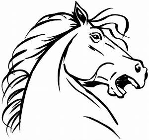 SignSpecialist.com – Beevault Decals - Angry horse head in ...