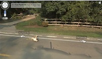 funny google map pictures (8) - Dump A Day