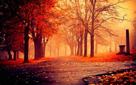 Autumn Wallpapers Cozy by 23 Quotes From Novels That Warmly Welcome The Cozy Autumn