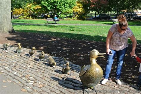 mother duck  baby duck statues  boston public garden