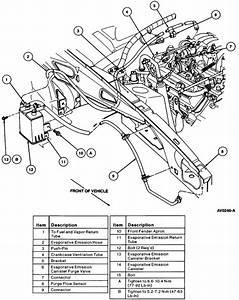 1997 Mustang Cobra P1443 Engine Code Replaced Purge