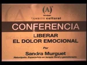 LIBERAR EL DOLOR EMOCIONAL - YouTube