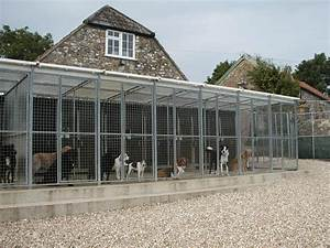 blog east shore39s veterinary hospital With the dog house boarding kennels