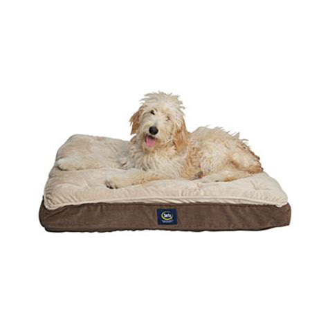 view serta 174 super pillow top pet bed deals at big lots
