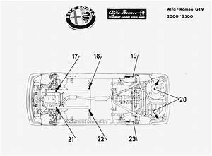 1986 Alfa Romeo Spider Wiring Diagram  Alfa  Auto Fuse Box Diagram
