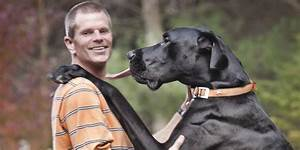 Rest In Peace Zeus, World's Tallest Pooch | HuffPost