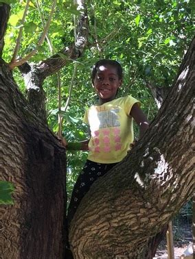 primavera preschool home 160 | climbing