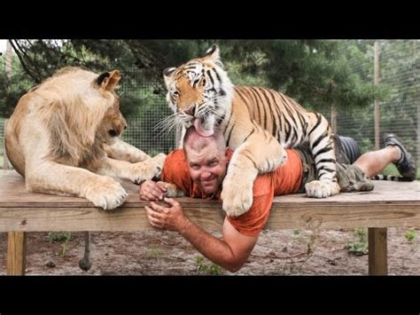 Liger Half Lion Half Tiger Video Doovi