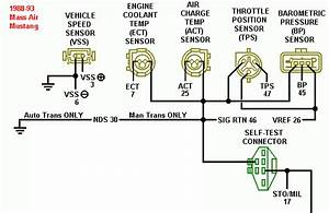 Can Anybody Explain This Small Piece Of Wiring Diagram