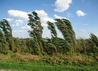 Шкала Бофорта – сила ветра и состояние моря. Определение направления и скорости ветра Сила ветра измеряется в баллах