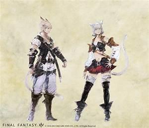FFXIV39s Hyur And Miqo39te Races Receive Gear Makeover Curse