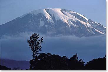 kilimanjaro trekkingclimbing  safaris information