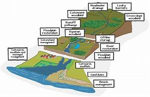 Managing The Upper Drainage Basin