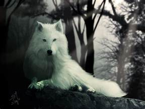 Game of Thrones Dire Wolves Ghost