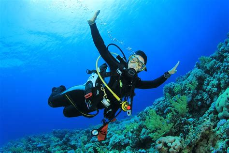 insurance for scuba divers insurechance