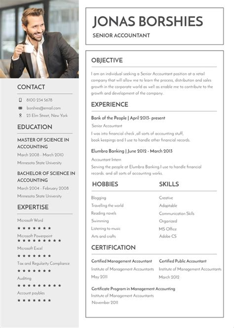 Resume Template Word It Professional by 26 Word Professional Resume Template Free