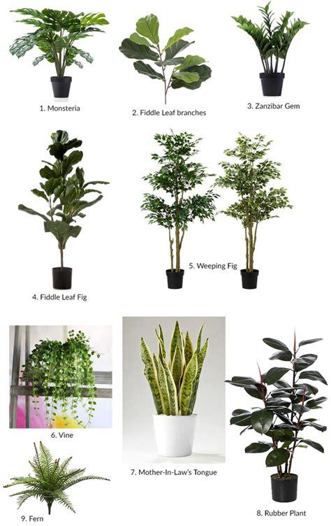 artificial plants   find