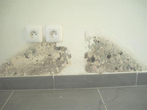 moisissure mur chambre moisissure coin de mur cheap les moisissures sont des