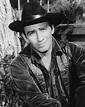 James Drury, Taciturn Star of 'The Virginian,' Dies at 85 ...