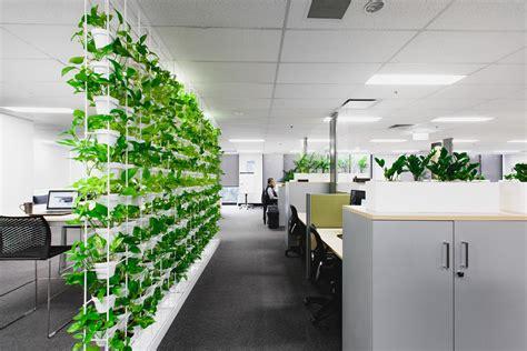 green office interior design sustainability plants match ambius australia