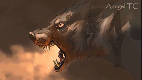 Best Anime Wolf Drawings
