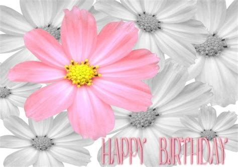 images  happy birthday clip art  pinterest