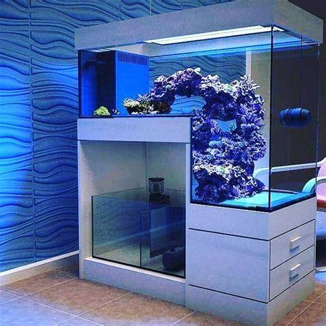 Pin by bambooshonok on reef   Pinterest   Aquariums