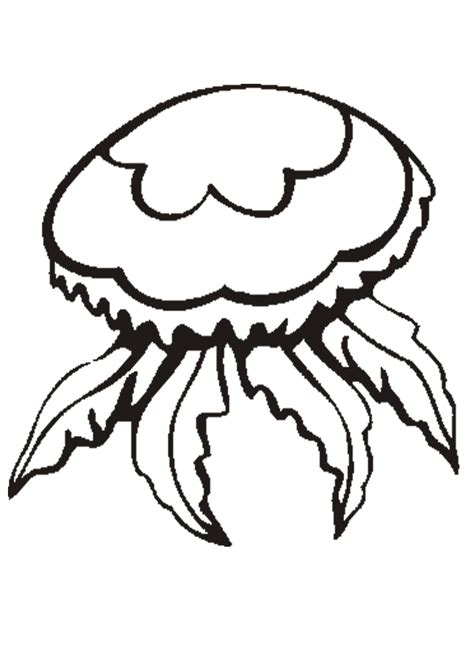 Cute Jellyfish Coloring Pages  Kids Coloring Pages
