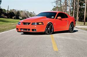 2004 Ford Mustang Cobra - The One That Got Away