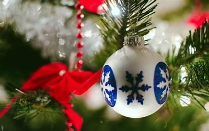 Seasonal Ornament Bulb Holidays Sphere Globe Decoration