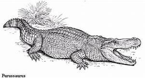 Image Gallery purussaurus