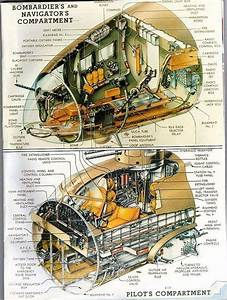 Cutaway Art Of The Nose Of A B17