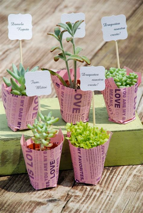 ideas  wedding favors plant favors plante
