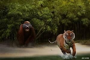 Julio Lacerda Gigantopithecus versus tiger A male ...