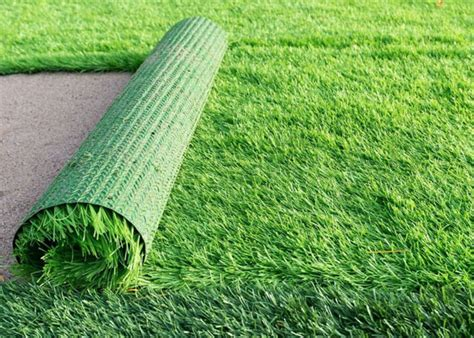 5 Lawns Of The Future