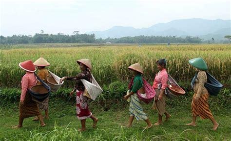peran perempuan  masyarakat tradisional womens