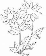 Sunflower Coloring Pages Sunflowers Clipart Printable Colouring Preschoolers Template Drawing Plants Sheets Cliparts Number Tangled Clip Preschool Simple Library Adult sketch template