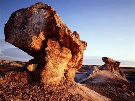 A Guide to Arizona's Petrified Forest National Park