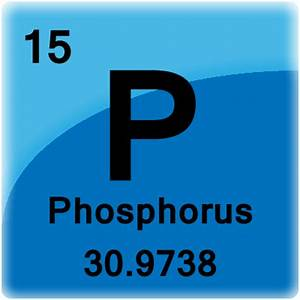 Phosphorus Element Cell - Science Notes and Projects