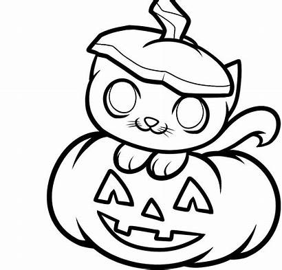 Pumpkin Coloring Patch Pages Kitten Clipartmag