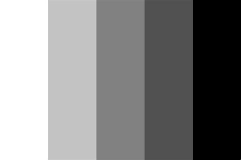 monochrome color monochrome puppet color palette